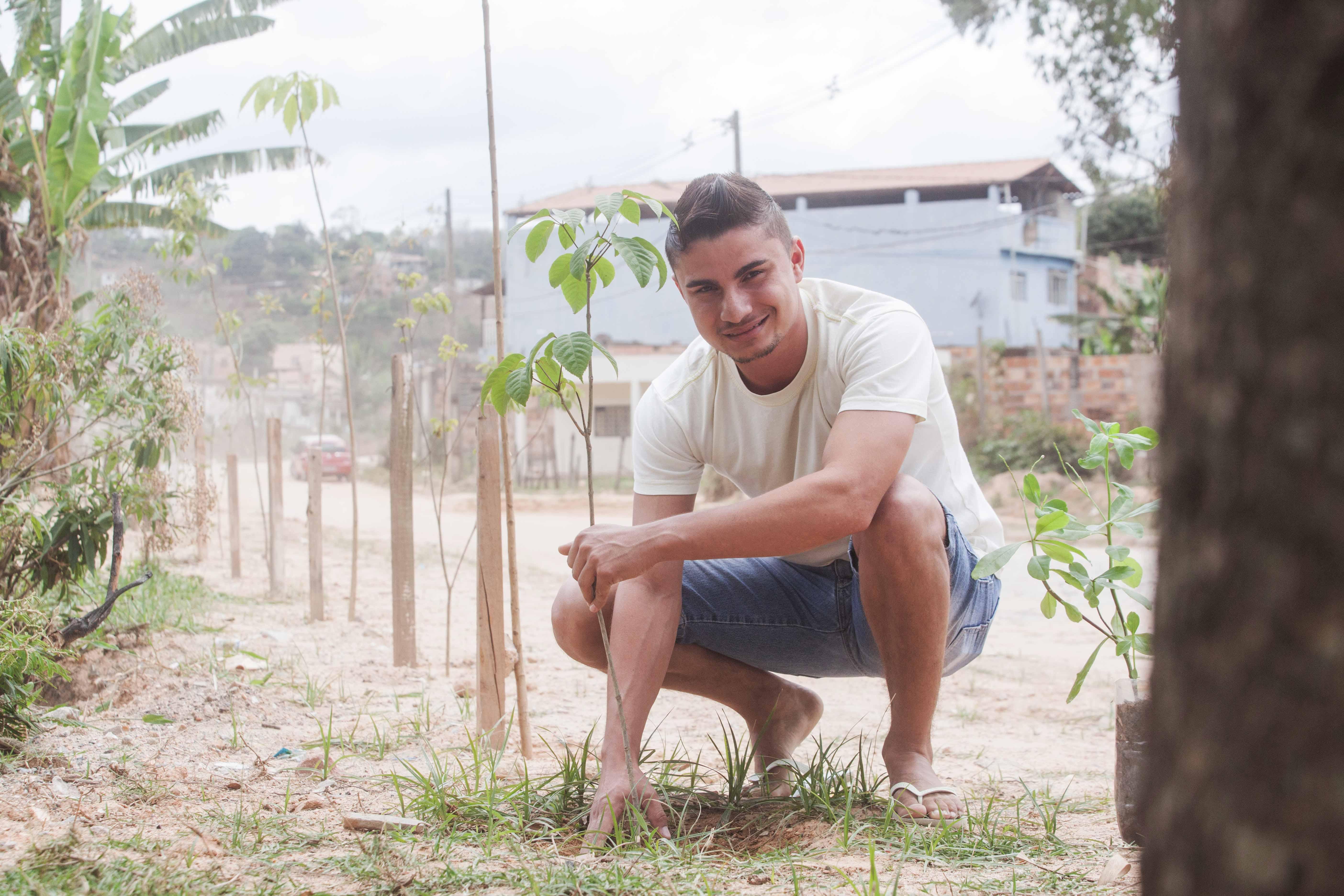 frentista plantando
